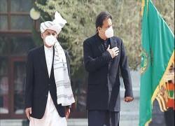 Pakistan steps up Afghan peace efforts