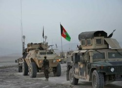 SIX SECURITY FORCE MEMBERS KILLED IN BAGHLAN, NIMROZ: SOURCES