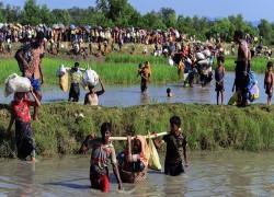 রোহিঙ্গা: মামলা লড়তে ওআইসি'কে ৫ লাখ ডলার দিয়েছে বাংলাদেশ