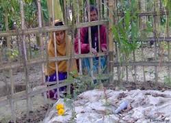 'সীমান্তে হত্যার আশি ভাগই ভারতীয় নাগরিক'
