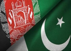 Pakistan urges Afghanistan to take action against terrorists
