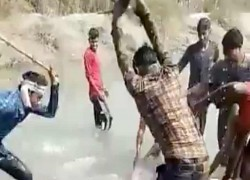 THREE MEN FILMED BEATING DOLPHIN TO DEATH ARRESTED IN INDIA