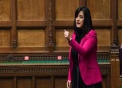 BRITISH MP MAKES IMPASSIONED PLEA FOR KASHMIR