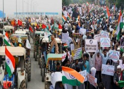India: Why the anti-CAA and farmers' agitations have been perceived differently