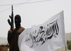 আফগান সরকার আর কোন তালিবান যোদ্ধাকে মুক্তি দেবে না -হামদুল্লাহ মুহিব