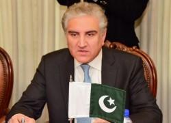 Kashmiri struggle 'just, sacred, non-negotiable': FM Qureshi