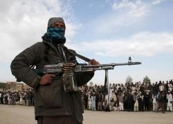 TTP oversaw reunion of terror groups in Afghanistan: UN