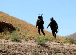 6 SECURITY FORCE MEMBERS KILLED IN BADGHIS CLASHES