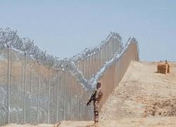 Afghan border fencing 'to curb terrorism'