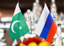 "Why did the Russian envoy to Pakistan describe his country as a ""developing"" one?"