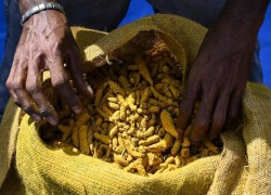 Sri Lanka import ban takes the spice out of life