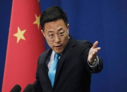 Quad summit : Small cliques will destroy international order, says China