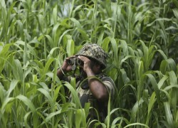 Pakistan, India peace move silences deadly Kashmir frontier