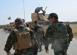 CONFLICTS LEAVE 65 DEAD IN AFGHANISTAN: MONITOR AGENCY