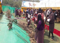 Million Tree Project for an ecologically sound Bhutan