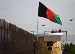 Decision to postpone Istanbul conference on Afghanistan not surprising, senior diplomat