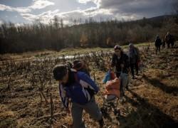 The EU efforts to repatriate Afghan asylum seekers are dangerous