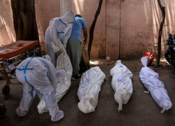 INDIA'S CORONAVIRUS INFECTIONS CROSS 18 MILLION; RECORD NUMBER OF DAILY DEATHS