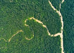 ঘূর্ণিঝড় ইয়াসে পূর্ব সুন্দরবনের ব্যাপক ক্ষয়ক্ষতি