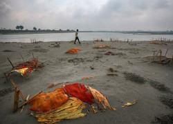 From the holy river, a story of human tragedy and State callousness