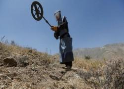 আফগানিস্তানে ১০ মাইন অপসারণকর্মীকে গুলি করে হত্যা