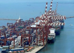 Sri Lanka's import ban puts hundreds of businesses in jeopardy