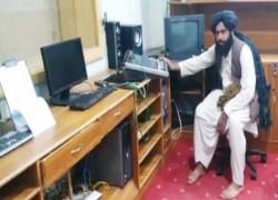 Taliban kill Afghan radio station manager, kidnap journalist