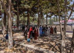 Six countries urge EU not to halt deportations of unsuccessful Afghan asylum seekers