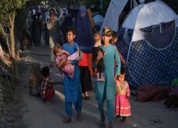 আফগানিস্তান: তালেবান গজনি দখল করেছে; দশম এই প্রাদেশিক রাজধানী দখল কেন গুরুত্বপূর্ণ