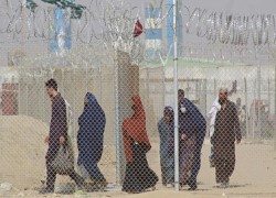 Afghanistan's neighbours offered millions in aid to harbour refugees