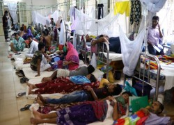 Dengue adds to COVID-hit Bangladesh's woes as dozens die
