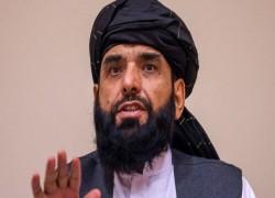 কাশ্মিরের মুসলিমদের পক্ষে 'স্বর চড়াবে' তালেবান