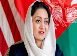 দুর্নীতিগ্রস্ত নেতারাই আফগানিস্তানকে ডুবিয়েছে: সাবেক আফগান রাষ্ট্রদূত