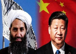Taliban rolls out red carpet to China's Belt and Road Initiative