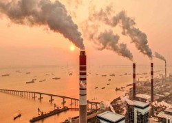 China and India send coal prices soaring amid green-energy push