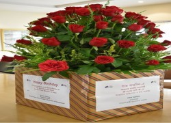 PM Hasina sends Modi bouquet of 71 roses on his 71st birthday