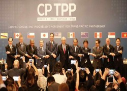 China's entry to CPTPP trade pact is closer than you think
