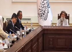 TALIBAN CALL FOR INTERNATIONAL AID AS WHO CHIEF VISITS KABUL