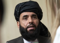 Taliban ask to participate in UNGA, mominate Suhail Shaheen as Afghanistan ambassador