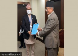 PANEL ON NEPAL-CHINA BORDER ISSUES CALLS FOR BILATERAL INTERVENTION